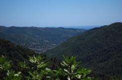 Verfallenes Rustico in Stellanello zum Wiederaufbau in idyllischer und sonniger Lage