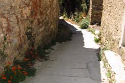 Zugang von der Straße ca. 20-30 m