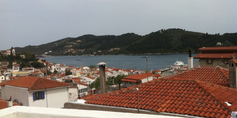 11 - Aussicht von Terrasse (Sicht 360°)