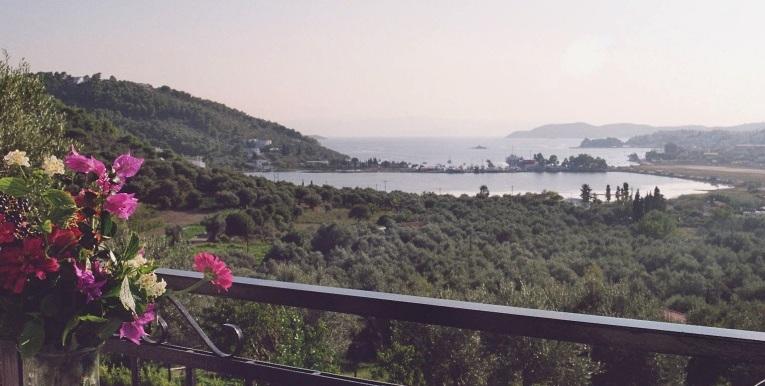 Aussicht vom Balkon 2